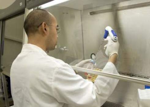 Biosecurity Scientist Using A Pipette In A Biosafety Cabinet. 93862492 Jose Gil