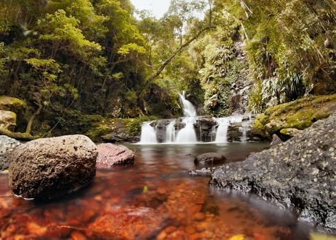 Natural Heritage World Heritage Area Lamington National Park Gondwana Land 106065263 Paintings