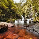 Natural Heritage World Heritage Area Lamington National Park Gondwana Land 106065263 Paintings