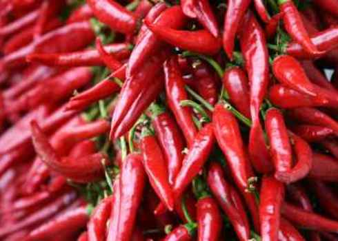 Provisioning Services Red Chilli Pepper Strings Hungary Frank Chang