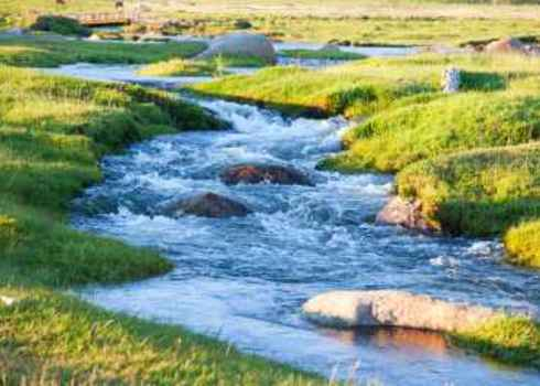 Riparian Summer Mountain Stream In Grassland Hunta