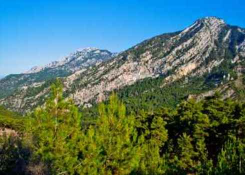 Crisis Ecoregion Rocks And Trees Of The Taurus Mountains Turkey 90692845 A Ix Yago