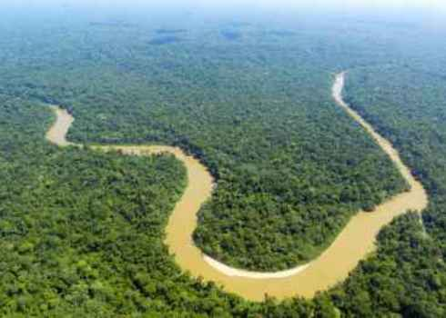If Ls Dr. Morley Read The Cononaco River In The Ecuadorian Amazon From The Air