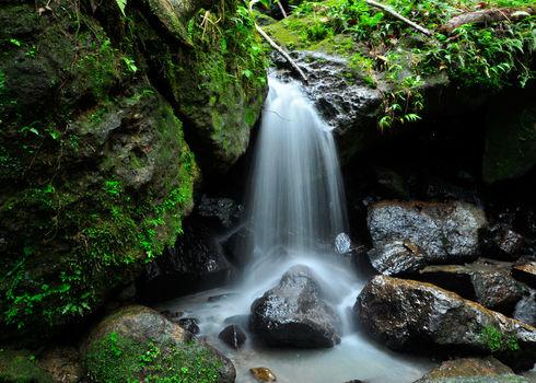 Az Esmall Water Falls El Yunque Rain Forest In Puerto Rico 90945872 Sahani Photography
