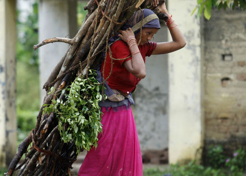 Renewable Resources Nepalese Lady Bearing Firewood (Editorial Use Only) Kathmadnu, Nepal Iv Nikolny