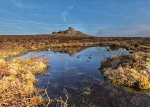Ecosystem Wetlands At Haytor Dartmoor National Park, Devon, Uk Andy Fox Photography (Uk)