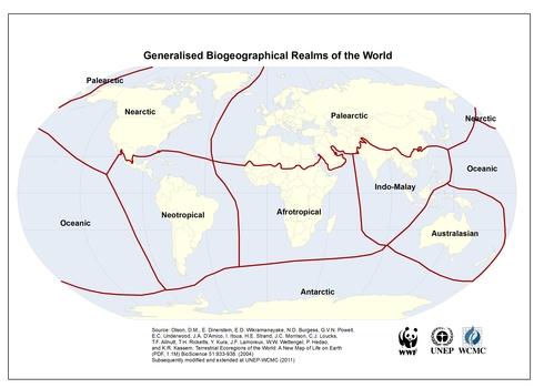 Biogeographical Realms Olson Et Al Unep Wcmc 2011
