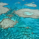 Mpa Great Barrier Reef Off The Coast Of Queensland Australia 131622320 Edward Haylan