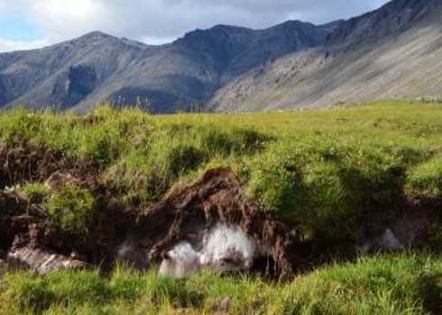 Carbon Sink Mountains And Permafrost 113205562 R. Vickers