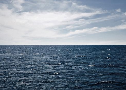 Pelagic Ocean Surface 73585162
