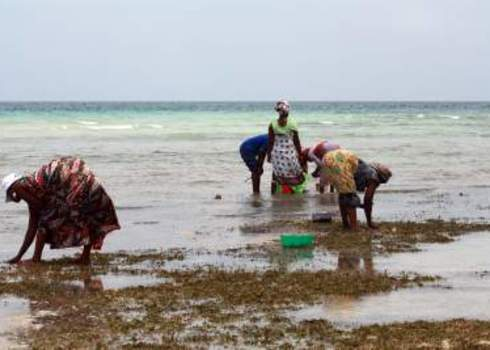 East Africa Zanzibar